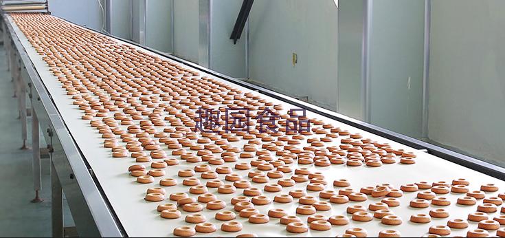 趣园食品饼干生产线